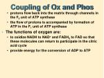 coupling of ox and phos1