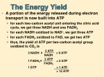 the energy yield
