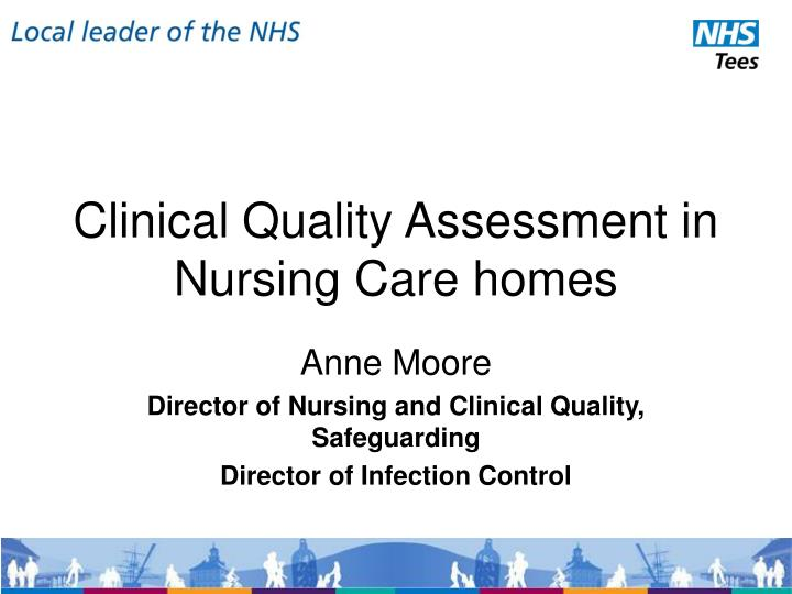 clinical quality assessment in nursing care homes n.