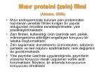 m s r proteini zein filmi akbaba 2006
