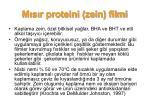 m s r proteini zein filmi2