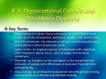 8 3 organizational culture and workforce diversity