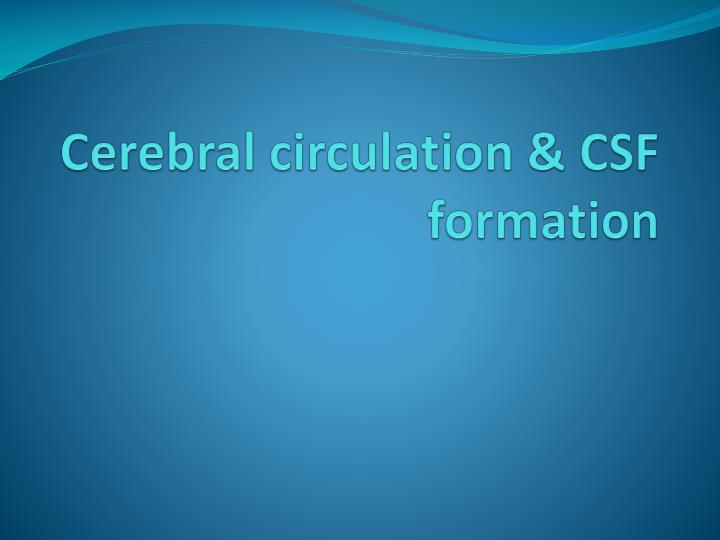 cerebral circulation csf formation n.
