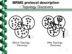 mrms protocol description topology discovery