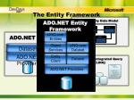 the entity framework