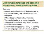 l ink between language and economic processes in multicultural societies
