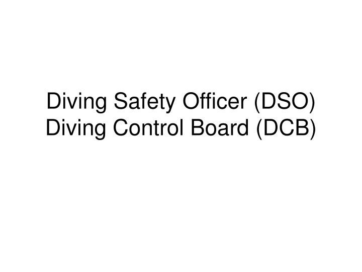 diving safety officer dso diving control board dcb n.