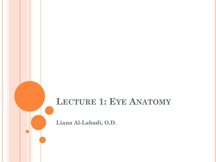 lecture 1 eye anatomy n.