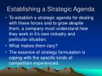 establishing a strategic agenda1