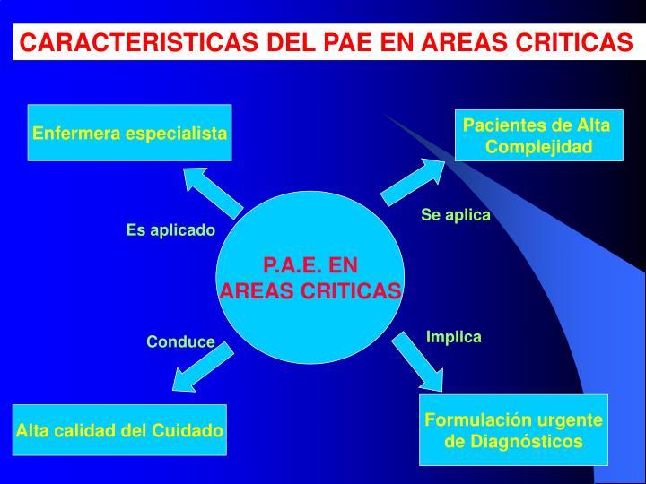 CARACTERISTICAS DEL PAE EN AREAS CRITICAS