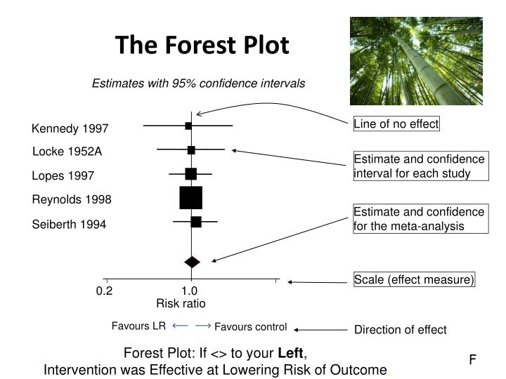 The Forest Plot