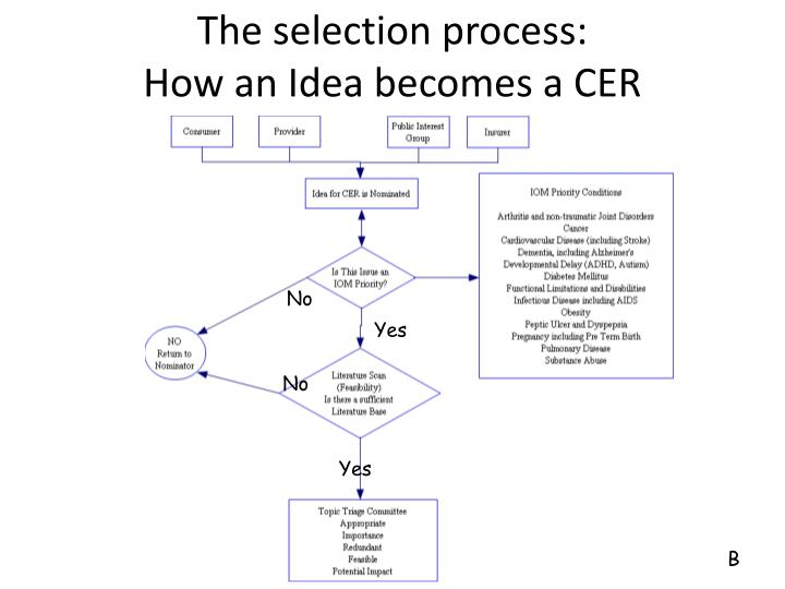 The selection process: