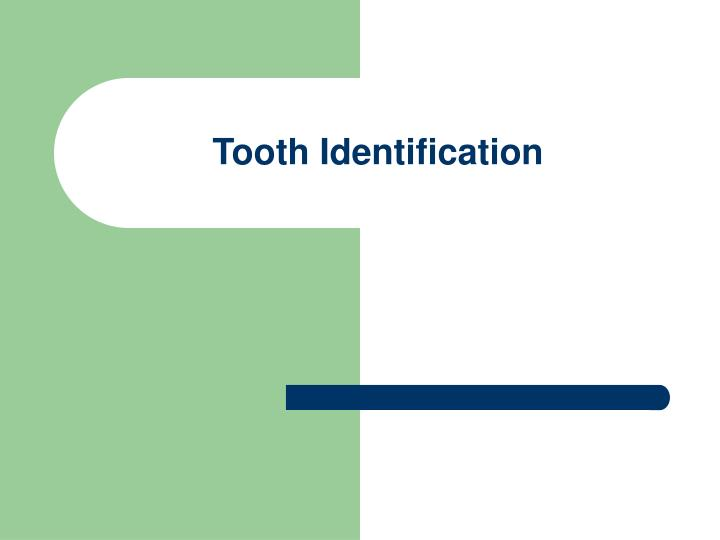 tooth identification n.