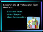 expectations of professional team members