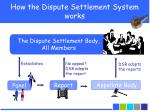 how the dispute settlement system works