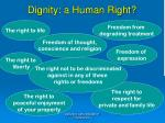 dignity a human right