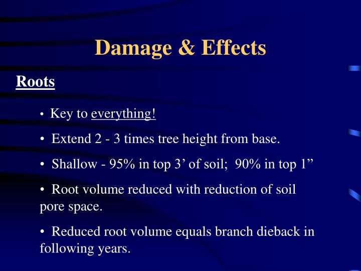 Damage effects
