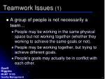 teamwork issues 1