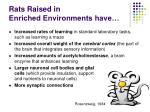 rats raised in enriched environments have