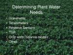 determining plant water needs