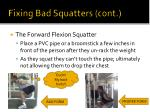 fixing bad squatters cont