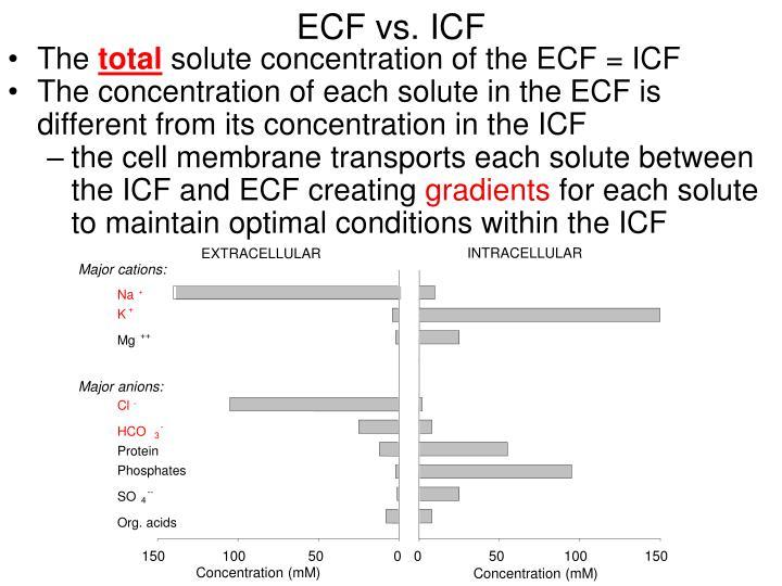 ECF vs. ICF