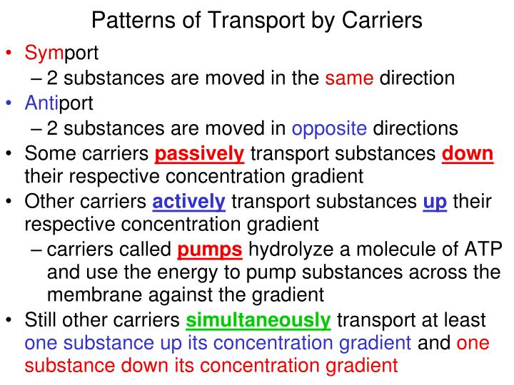 Patterns of Transport by Carriers