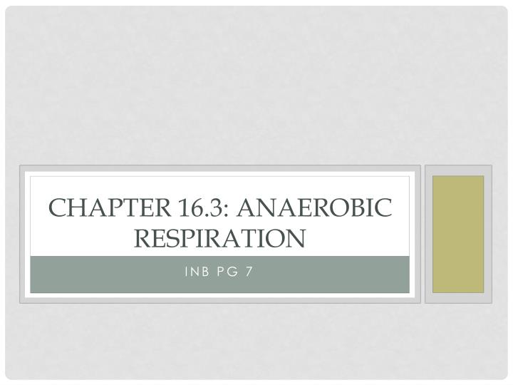 chapter 16 3 anaerobic respiration n.