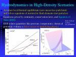 hydrodynamics in high density scenarios
