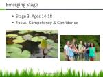 emerging stage