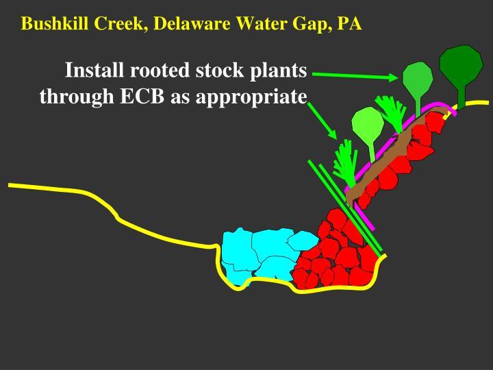 Bushkill Creek, Delaware Water Gap, PA
