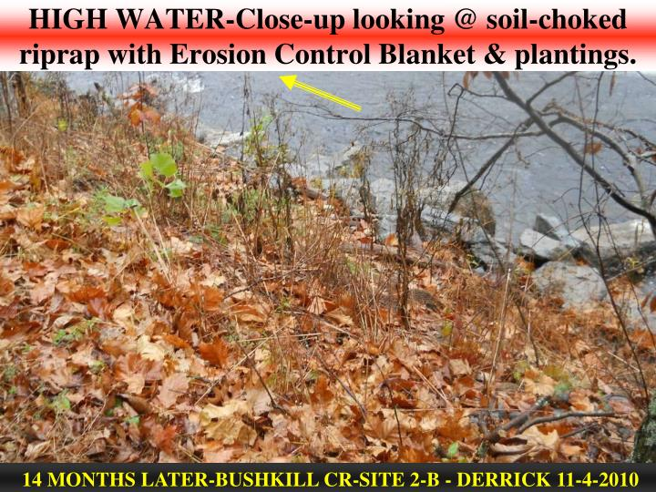 HIGH WATER-Close-up looking @ soil-choked riprap with Erosion Control Blanket & plantings.