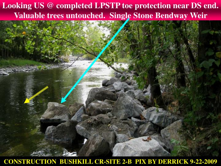 Looking US @ completed LPSTP toe protection near DS end.  Valuable trees untouched.  Single Stone Bendway Weir
