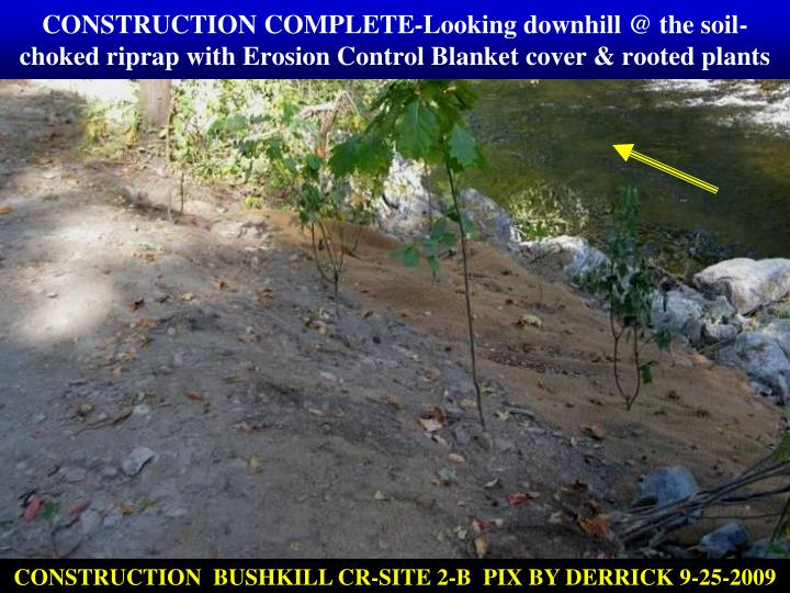 CONSTRUCTION COMPLETE-Looking downhill @ the soil-choked riprap with Erosion Control Blanket cover & rooted plants