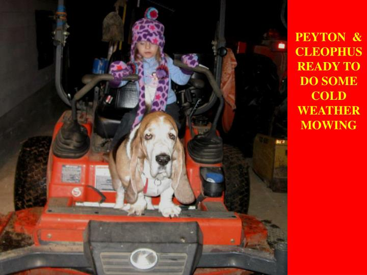 PEYTON  & CLEOPHUS READY TO DO SOME COLD WEATHER MOWING