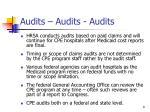 audits audits audits