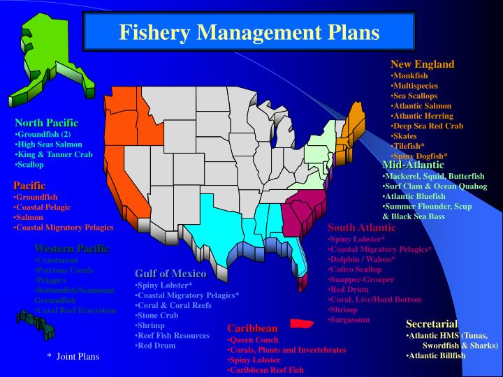 Fishery Management Plans