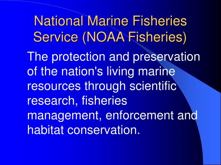 National Marine Fisheries Service (NOAA Fisheries)