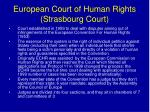 european court of human rights strasbourg court
