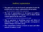 auditory segmentation