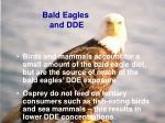 bald eagles and dde