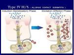 type 1v h s allergic contact dermatitis
