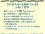 genes para subunidades alfa y beta
