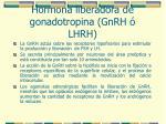 hormona liberadora de gonadotropina gnrh lhrh