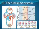 h5 the transport system