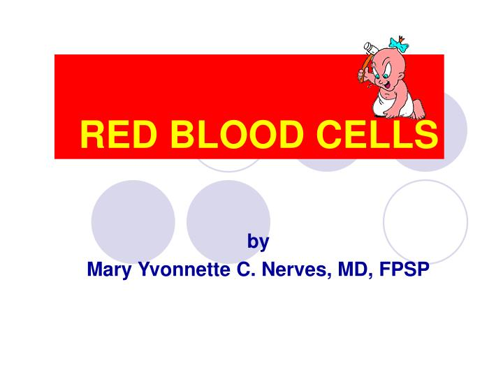 red blood cells n.