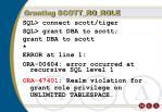 granting scott ro role6