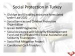 social protection in turkey