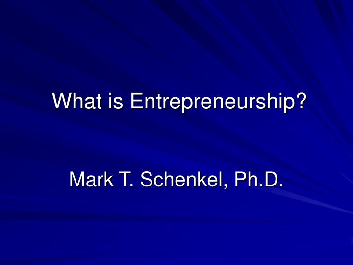 what is entrepreneurship n.