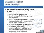 evaluation of ecq pilot future challenges